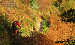 Penmachno Mountain Biking
